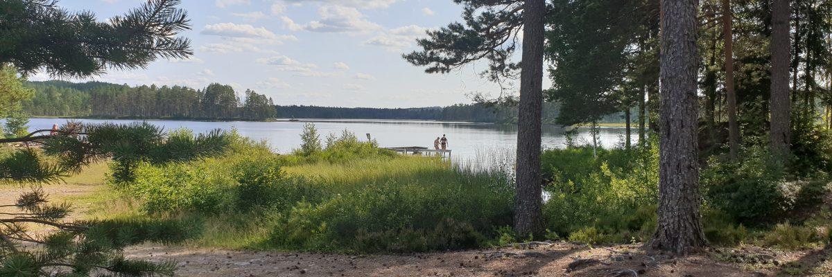 zwemmen zomer bridsjon